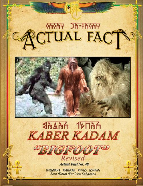 ACTUAL FACT - 48 Big Foot